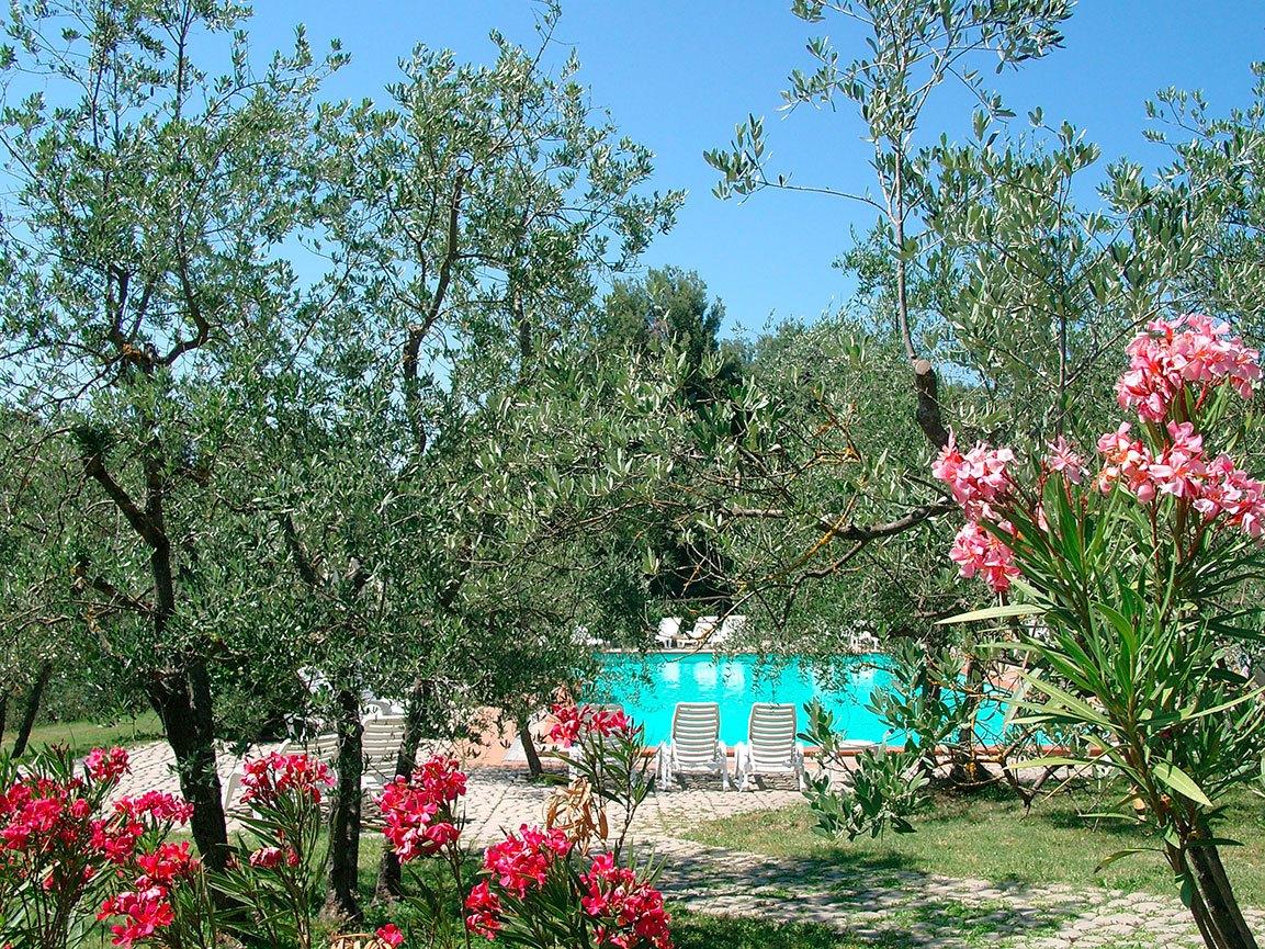 Agriturismo con Piscina Terranuova Bracciolini Arezzo - Poggitazzi